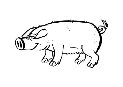 pig coloring pages for toddlers free coloring pages of peppa pigs
