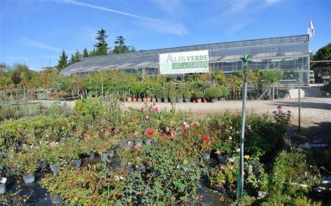 orti e giardini alfa verde orti e giardini piante e fiori
