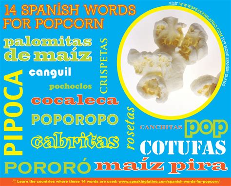 bathroom in spanish language spanish words for bathroom and bathroom components
