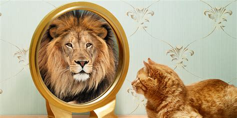 self image the surprising benefits of self deception huffpost