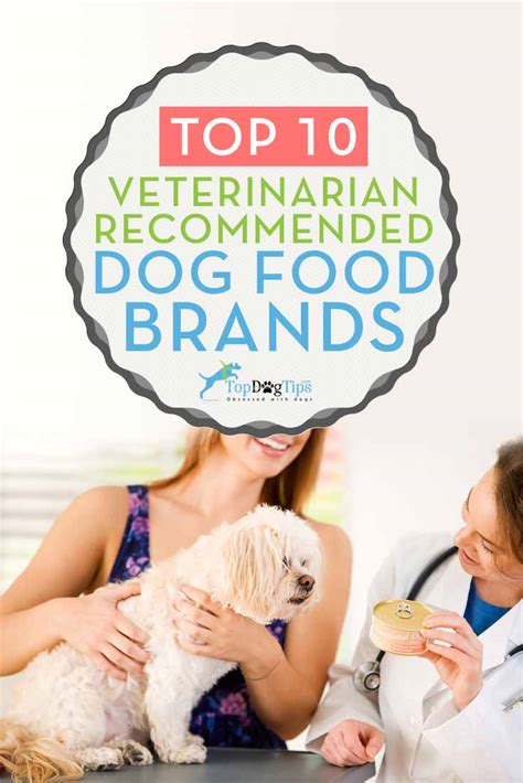 vet recommended puppy food 10 vet recommended food brands that are inexpensive 2017