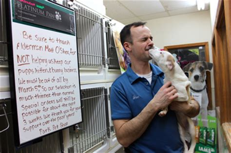 puppy store chicago pet store owner fights puppy mill ban we are trying to stay open mt greenwood