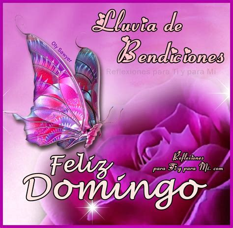 imagenes hola feliz domingo pin by chivita on buenis dias pinterest