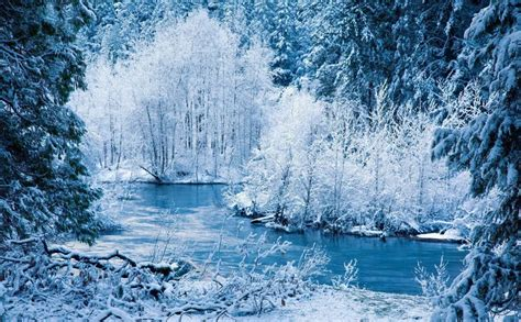 winter images snow winter 1920x1080 hd wallpaper