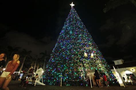 delray 100 foot christmas tree structurally unsound to