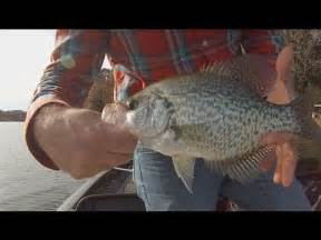 winter crappie fishing  big slabs arkansas crappie