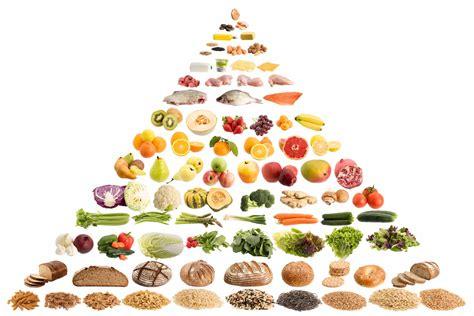 in quali alimenti si trovano le fibre fibre alimentari cosa sono e che funzione svolgono nel