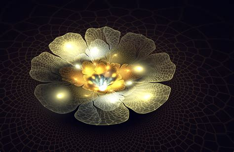 light flower by fractaldesire on deviantart