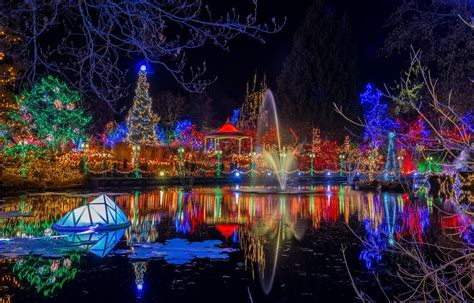 christmas lights coulon park lights madinbelgrade