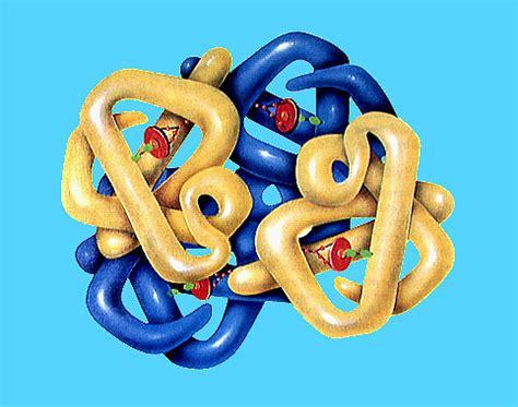 define cadena polipeptidica prote 237 nas estructura
