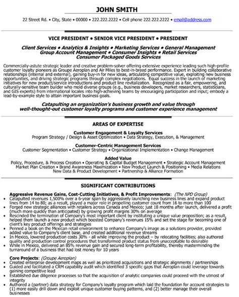 Ceo Resume Sample Doc by Senior Vice President Loyalty Resume Template Premium