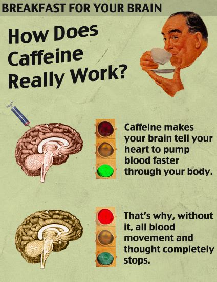 science how does caffeine really work