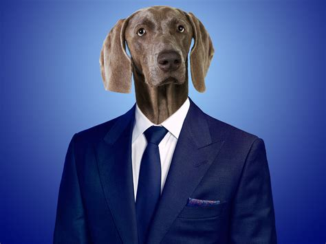 and in a puppy dogs in business suits