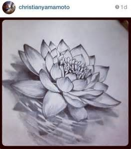 Lotus Flower Sketches 1000 Ideas About Lotus Flower Drawings On