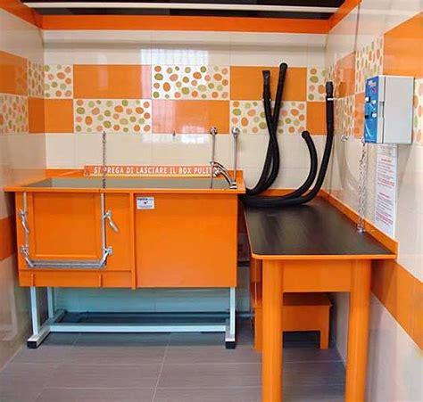 vasche per lavaggio cani concesio un originale lavaggio per cani self service a