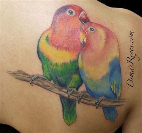 lovebird colors kingdom studio tattoos nature animal bird color