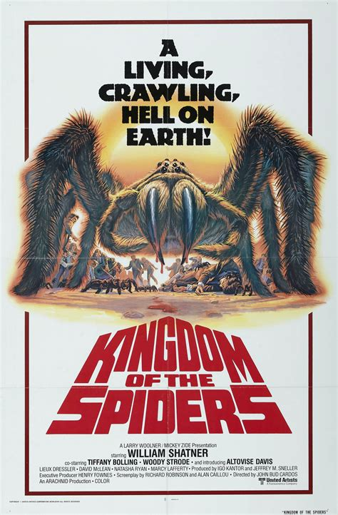 lhorrible invasion kingdom   spiders