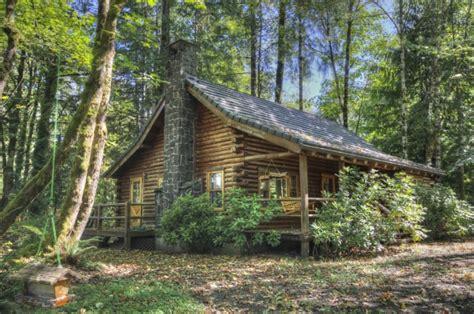 mt log cabin in timberline liz warren mt
