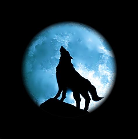 the wolf moon feng shui architect