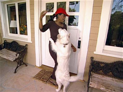 oprah s dogs treating and dogs with