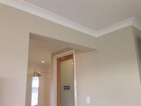 interior wall paint colour dulux self destruct half