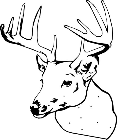 deer head logo coloring pages www imgkid com the image
