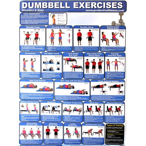 productive fitness poster series dumbbell exercises