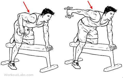 Improve Your Bench Press Bodybuilding Quot Tricep Dumbbell Kickback Quot Causing Fatigue