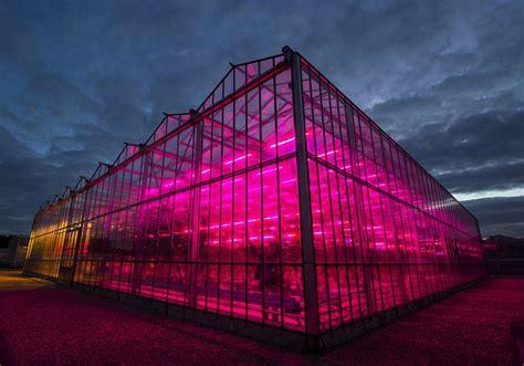 eclairage serre horticole culture en int 233 rieur culture en serre les avantages de