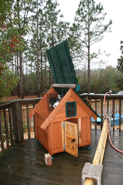 backyard duck house small duck house dog house kit backyard chickens community