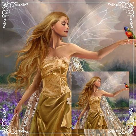 beautiful fairies most beautiful fairy pictures www imgkid com the image