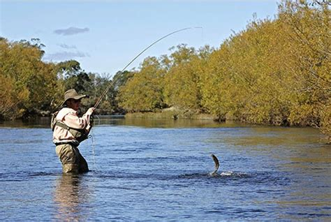 the fly and fast water fishing with the floating fly on american trout streams together with some observations on fly fishing in general classic reprint books trout fishing all about fishing and freshwater ecosystem