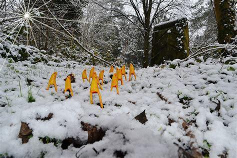 outdoor art snow entity art