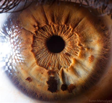 fotografias de ojos  detalles por suren manvelyan