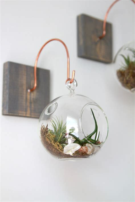 handcrafted home decor wood and copper mount with terrarium unique wall decor handmade home decor tillandsia