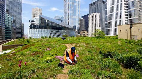 Key Food Garden City Ny Globe Net Rooftop Gardens Could Grow Three Quarters Of