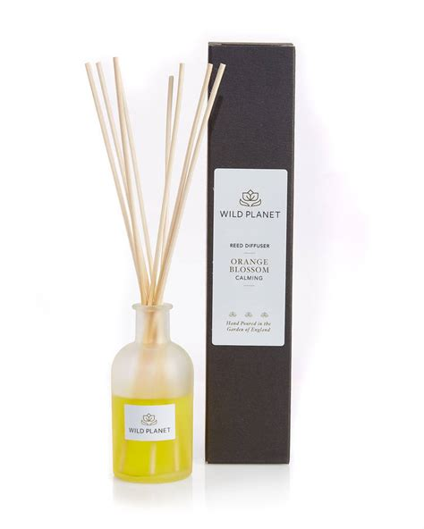 Reed Diffuser Blossom Aromaterapi 150ml aromatherapy orange blossom scented reed diffuser by planet notonthehighstreet