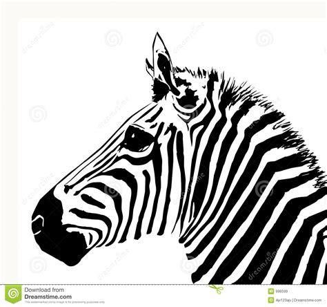 zebra stock vector image of material animal hairy