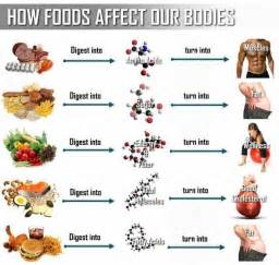 how foods affect our healthful diet and nutrition
