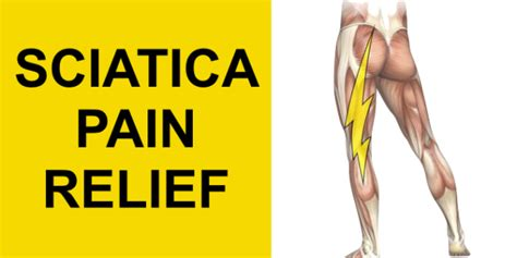 how to treat sciatica pain in leg admin the pain free institute page 5