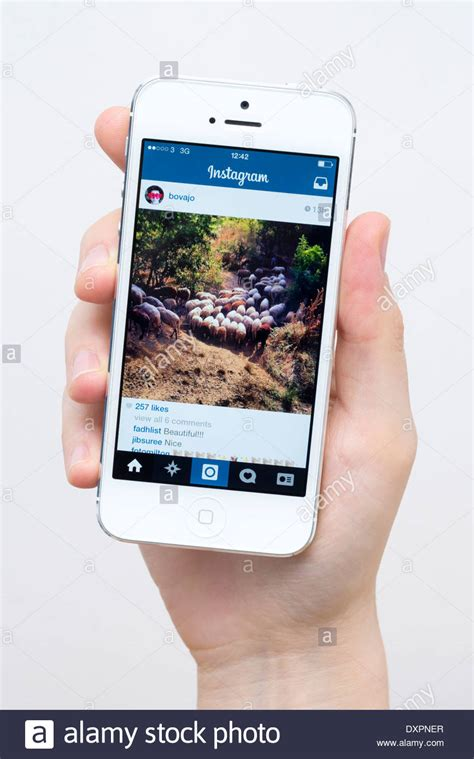 Can Other See What I Search On Instagram Related Keywords Suggestions For Iphone Instagram