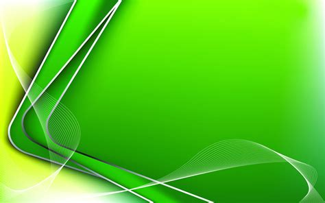 beautiful green color decoration of the background of your computer wallpaper