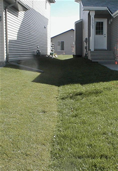 how to fix drainage problems in your yard envy exteriors