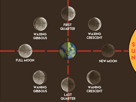 Moon Phase | how to make a moon phases chart 12 steps with pictures