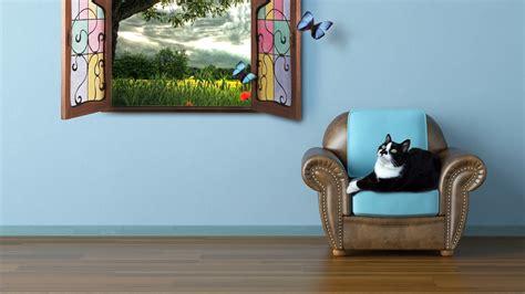 fond decran hd chat fenetre fauteuil papillon images