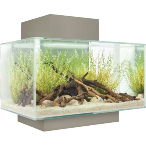 modern aquarium kitchen with a strong visual impact by the modern fluval edge aquarium full review and setup guide