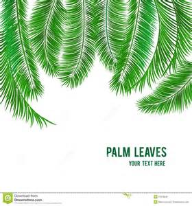 Palm Tree Templates by Palm Tree Leaves Template