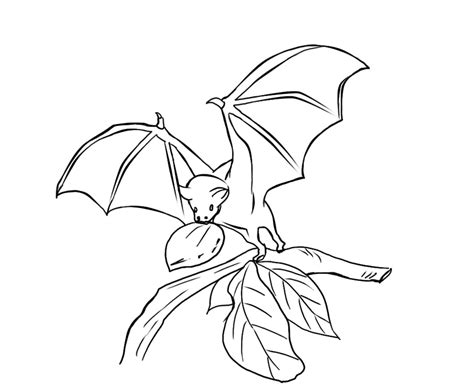 bat coloring pages bat coloring pages coloring pages to print
