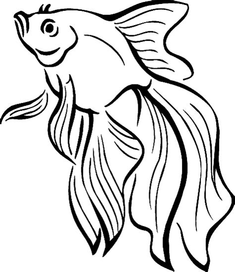 coloring page tropical fish realistic tropical fish coloring pages clipart panda