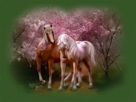Imagenes Romanticas Con Caballos | im 225 genes tiernas de caballos